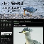 あまりにも正しすぎるカテゴリの使い方 鳥ブログ (秣)隙間産業
